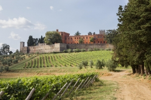 Tour castelli Chianti