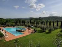 Il parco con gli olivi circostante la piscina